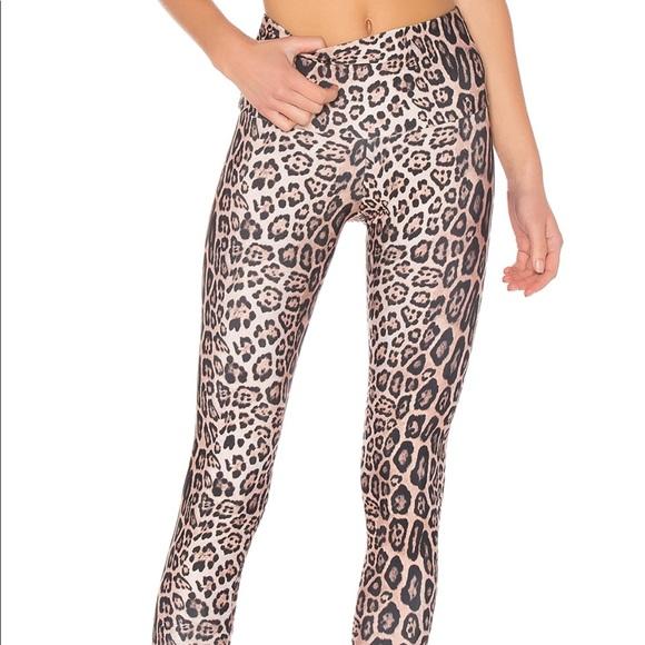 6ff4247c29 Onzie Pants | High Rise Legging In Leopard | Poshmark